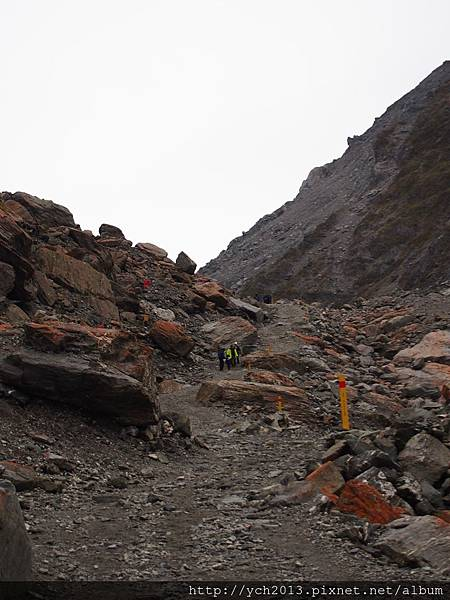 20140728Fox Glacier (11).JPG