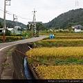20151212龜山楓樹坑(24).JPG