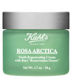 3605975054996_Rosa_Arctica_Cream_May2011.jpg