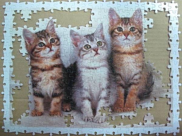 300 - 三隻小貓06.jpg
