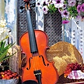 1000_102266_Violin's Melody.jpg