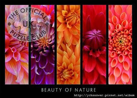 19046-Beauty-of-Nature-w.jpg