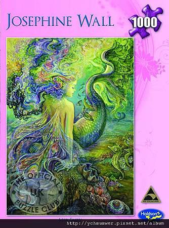 H09071-Mer-Fairy-w.jpg