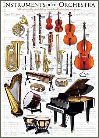 Orchestra Instruments1410EUR.jpg