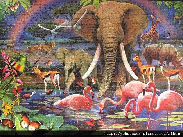 1000 - African Savannah32.jpg