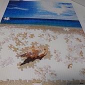 500片 - 貝殼與海05