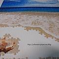 500片 - 貝殼與海06
