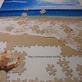 500片 - 貝殼與海07