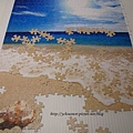 500片 - 貝殼與海09