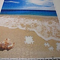 500片 - 貝殼與海10