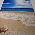500片 - 貝殼與海11