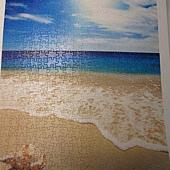 500片 - 貝殼與海13