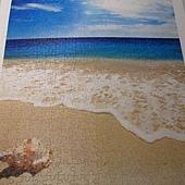 500片 - 貝殼與海14