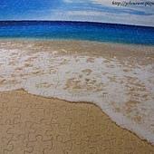 500片 - 貝殼與海17
