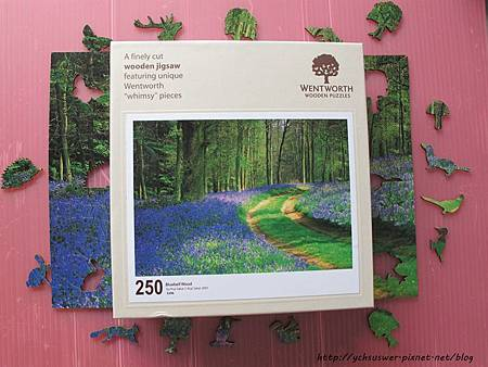 250 - Bluebell Wood10.JPG