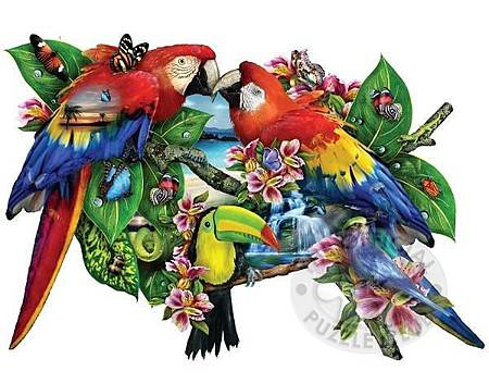 SO95278_parrotsinparadise-jigsaw-puzzle-w.jpg