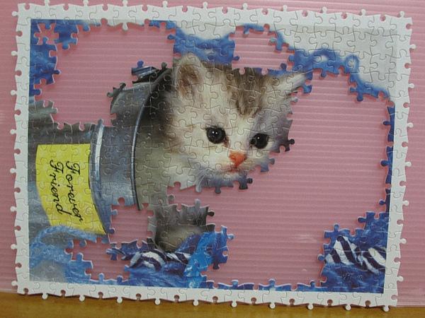 300 - 好奇小貓14.jpg