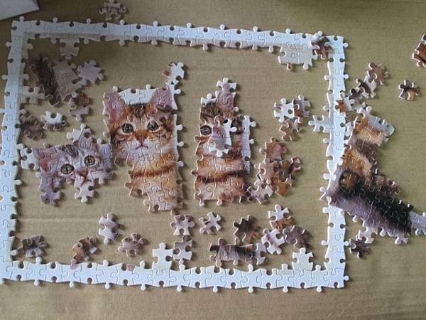 300 - 三隻小貓04.jpg