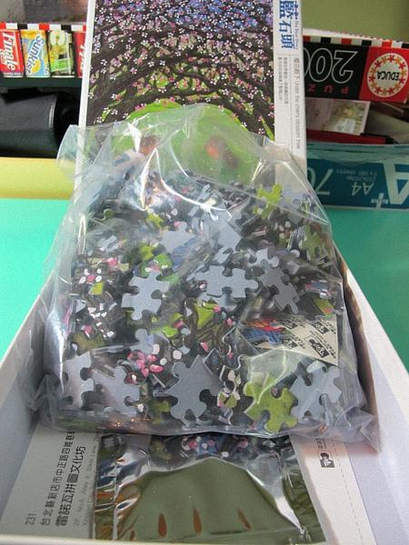 櫻花樹下-06.jpg
