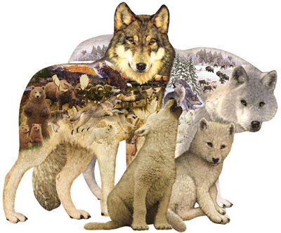 Wolf Song.jpg