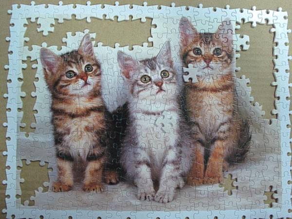 300 - 三隻小貓07.jpg
