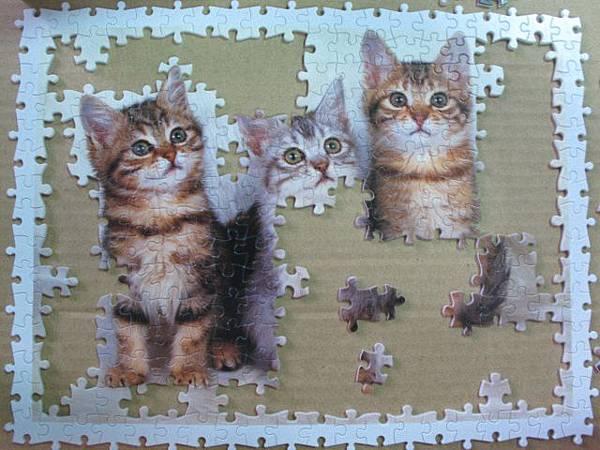 300 - 三隻小貓05.jpg