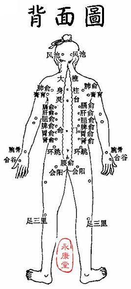 《灸法秘傳》-02-背面圖.JPG