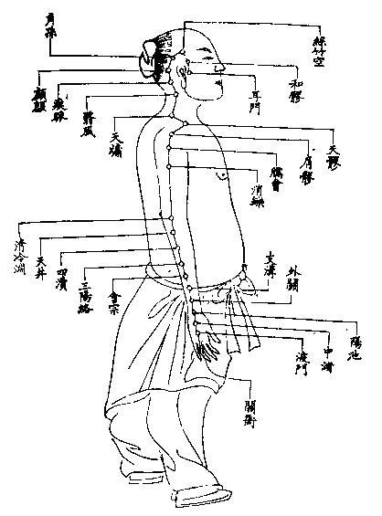 12_手少陽三焦經【《厘正按摩要術》(清‧張振鑒)】.JPG