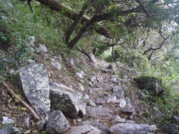 東卯山亂石區