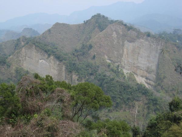 0316桐林花道旁的半面山