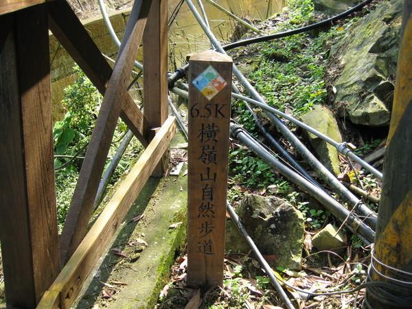 橫嶺山木馬步道(0503)