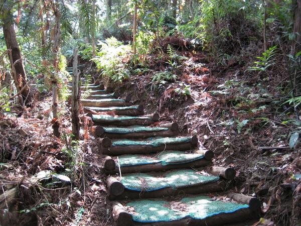 橫嶺山一小時的階梯(有夠累)