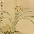 汪士慎--綠萼梅圖