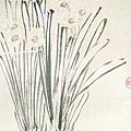 金農--水仙圖