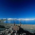 西藏納木措湖邊的祭物