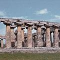 Temple of Hera I希拉女神廟