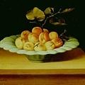 baugin-水果﹝The Fruit﹞