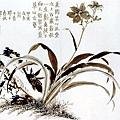 金農--花卉
