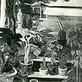葉火城--植木薰‧第二回府展‧1939年‧民國28年‧昭和14年 ‧油畫