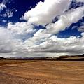 可可西里藏羚羊保護區.jpg