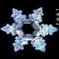 看到佛教的水晶體