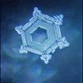 看電視機前的水晶體