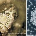 日本加藤住持对着藤原湖水念诵佛教咒语之前和之后的水结晶