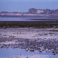 羅塞蒂長眠之地的海邊潮來潮往的景致.jpg