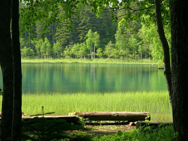 寂靜的阿寒湖