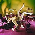 David LaChapelle - Лив Тайл