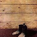 Rene Magritte - Summer Shoes