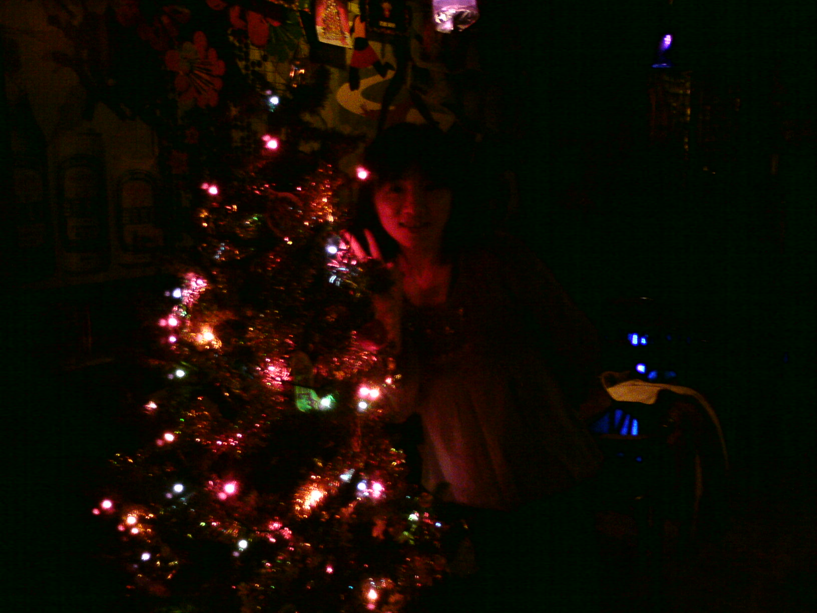 fly with X'mas tree in Johnny Pub