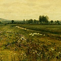 An Extensive Meadow Landscape with Geese by a Stream -1892