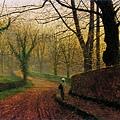 Stapleton Park near Pontefract Sun